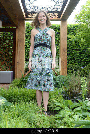2016 RHS Chelsea Flower Show  Featuring: Rosamund Pike Where: London, United Kingdom When: 23 May 2016 - Stock Photo