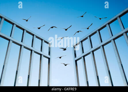 birds fly over the open gate - Stock Photo