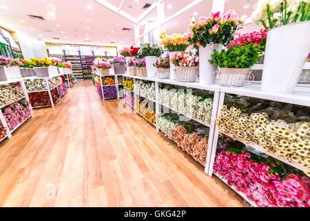 Kuala lumpur malaysia may 30 2016 paper flower shop at setia kuala lumpur malaysia may 30 2016 paper flower shop at setia mall mightylinksfo