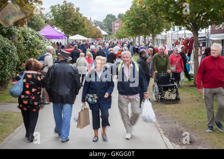 Southport Flower Show, Merseyside, UK. 21st Aug 2016:  As the good weather returns over the The Southport Flower - Stock Photo