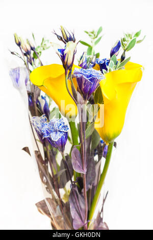 bouquet from flowers of fresh yellow Calla lily, blue Lisianthus, green spurge leaves isolated on white background - Stock Photo