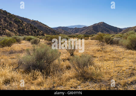 Dry California grasslands stretch into the hills on the fringe of the Mojave desert. - Stock Photo