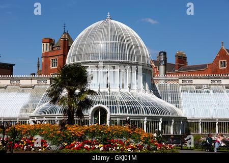 Palm House conservatory botanic gardens belfast - Stock Photo