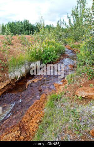 Hot spring runoff, containing iron deposits in creek bed. - Stock Photo