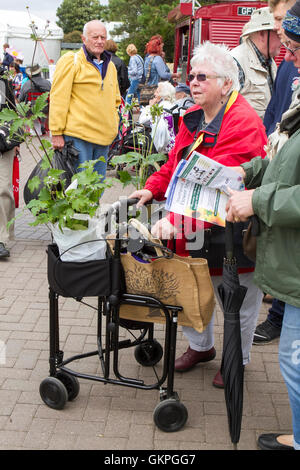 Savvy Shoppers, Southport, Merseyside, UK. 21st Aug 2016:  As the good weather returns over the Southport Flower - Stock Photo