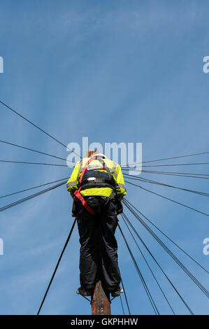 British telecoms engineer working on a telegraph pole in Bath city UK - Stock Photo