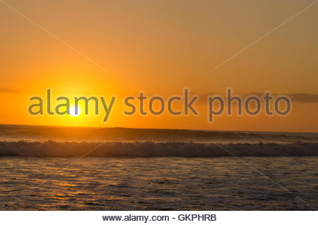 People surfinf in ocean on shore in central america - Stock Photo