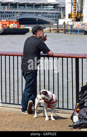 London England, UK. Man with a Staffordshire Bull Terrier (possibly cross), smoking, on the South Bank of the Thames - Stock Photo
