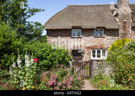 A traditional thatched cottage beside the lane in the Exmoor village of Bossington, Somerset UK