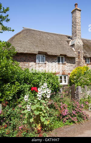 Traditional thatched cottages beside the lane in the Exmoor village of Bossington, Somerset UK - Stock Photo