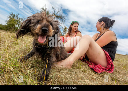 Two girls with a black dog on a summer meadow - Stock Photo
