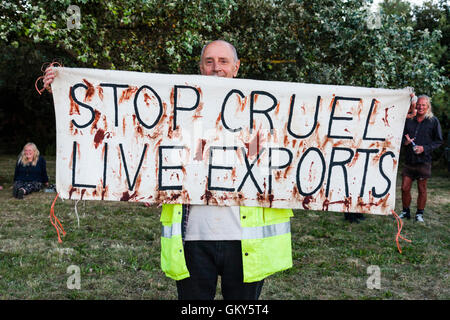 Man holding up placard smeared with fake blood, 'Stop Cruel Live Exports' during protest against live exports from Ramsgate. 'Stop cruel live exports'