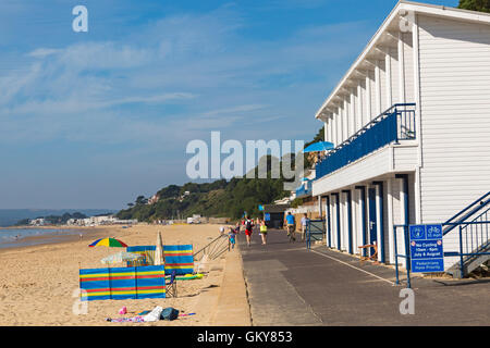 Poole, Dorset, UK 24 August 2016. UK weather: another hot sunny day at Branksome Chine and Branksome Dene Chine - Stock Photo