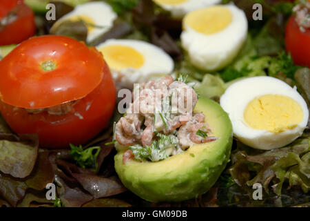 Staffed avocados and tomatoes with shrimps salad, mayonnaise, eggs and spices - Stock Photo