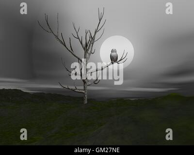Owl and moonlight - 3D render - Stock Photo