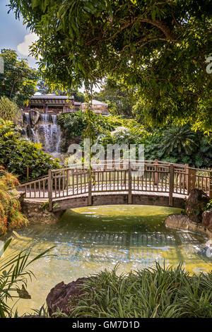 Bridge Across Watercourse Balata Botanical Gardens Guadeloupe West Indies