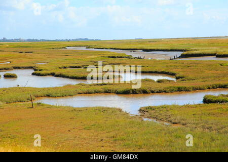 River Ore salt marsh and Orford Ness spit, looking north towards Orford, Boyton, Suffolk, England, UK - Stock Photo