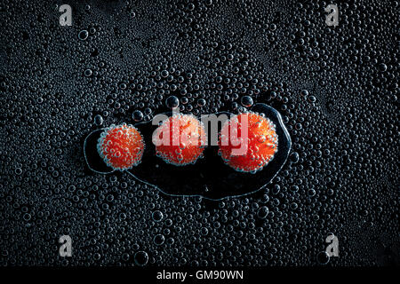 Cherry tomatoes in mineral water, a series of photos. Close-up carbonated water against black background, conceptual - Stock Photo