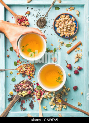 Two cups of healthy herbal tea with mint, cinnamon, dried rose, camomile flowers in spoons and man's hand holding - Stock Photo