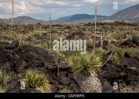 Carrizozo, New Mexico - The Malpais Lava Flow at the Valley of Fires Recreation Area. The lava flow is the result - Stock Photo
