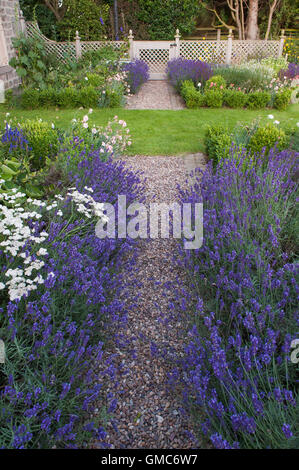 Gorgeous An English Formal Landscape Garden With Box Hedging And Stone  With Foxy  Path Lined With Lavender Flowers In Beautiful Traditional Designed  Landscaped Private Garden With Endearing Foundations Covent Garden Also Garden Vacuum Petrol In Addition Whitehall Garden Center And Rose Garden Court As Well As Buenos Aires Botanical Garden Additionally Garden City Travelodge From Alamycom With   Foxy An English Formal Landscape Garden With Box Hedging And Stone  With Endearing  Path Lined With Lavender Flowers In Beautiful Traditional Designed  Landscaped Private Garden And Gorgeous Foundations Covent Garden Also Garden Vacuum Petrol In Addition Whitehall Garden Center From Alamycom