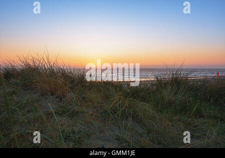 A look at the North Sea by the beach grass during sunset. - Stock Photo