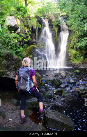 Lone Lady Walker Looking at Posforth Gill Waterfall in the Valley of Desolation, Bolton Abbey, Yorkshire Dales National - Stock Photo