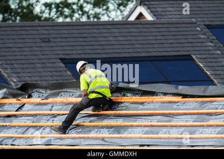 Roofer, roof, house, man, home, building, construction, people, male, architecture, builder, tool, hand, property, - Stock Photo