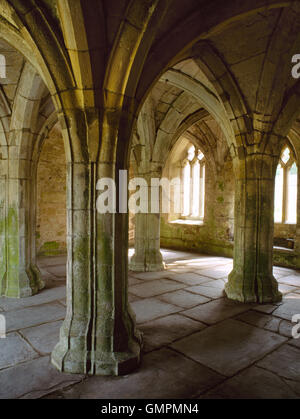 The late 14th-century chapter-house at Valle Crucis abbey has a rib-vaulted stone roof supported by four central - Stock Photo