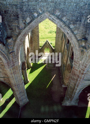 Looking down into the crossing, south transept, S entrance & S aisles of Tintern Abbey church, Monmouthshire, with - Stock Photo
