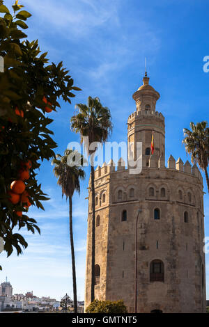 Torre del Oro (the Gold Tower), Sevilla, Andalusia, Spain - Stock Photo