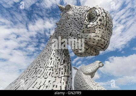 Edinburgh, UK. 27th Aug, 2016. The Kelpies designed by Andy Scott in Falkirk on a summers day. Credit:  Richard - Stock Photo