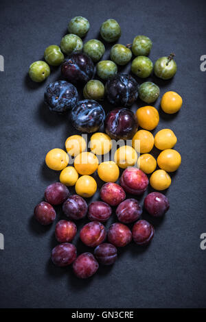 plums on dark slate background, overhead view - Stock Photo