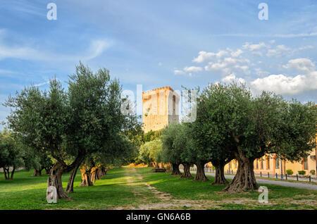 Castiglione del Lago (Umbria) Fortezza - Stock Photo