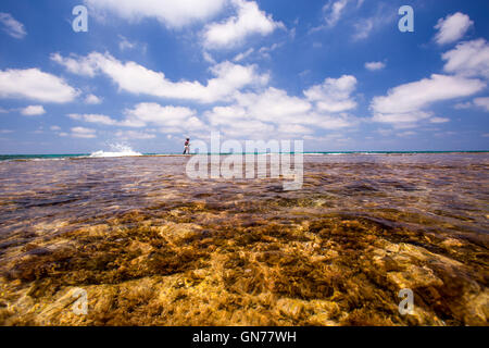 Lone fisherman at low tide on a beach - Stock Photo