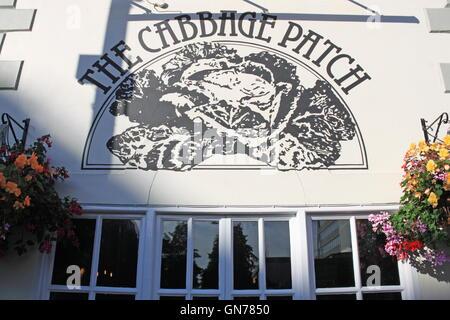 Cabbage Patch pub, London Road, Twickenham, Greater London, England, Great Britain, United Kingdom UK, Europe - Stock Photo