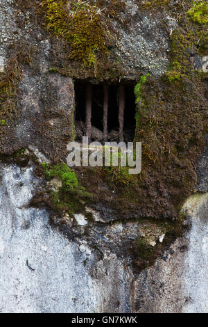 Window of the abandoned pillbox model 37 once used to be a part of the Czechoslovak border fortifications located - Stock Photo
