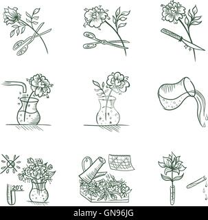 Floristic Vector Icons - Stock Photo