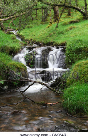waterfall at glen lyon, perth and kinross, highlands, scotland, united kingdom - Stock Photo