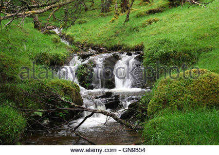 waterfall at glen lyon, perth and kinross, highlands, scotland, united kingdom - Stock Photo