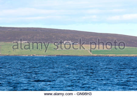 eday, orkney islands, scotland, united kingdom - Stock Photo