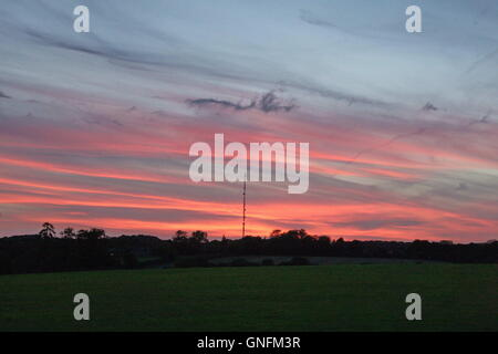 Lambourn, UK. 31st Aug, 2016. The sun sets Behind Membury Transmitting station, near membury services on the M4 after yet another warm day. Credit:  Daniel Crawford/Alamy Live News