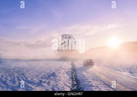 Car silhouette through fog on a winter morning - Stock Photo