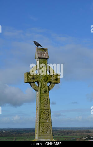 Stone celtic cross with a bird sitting on the top in Ireland. - Stock Photo