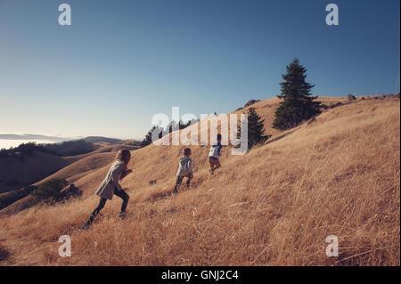 Two boys and a girl hiking up a hill, Mount Tamalpais, California, America, USA - Stock Photo
