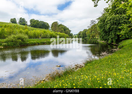 River Wharfe, near Hebden, Yorkshire. - Stock Photo