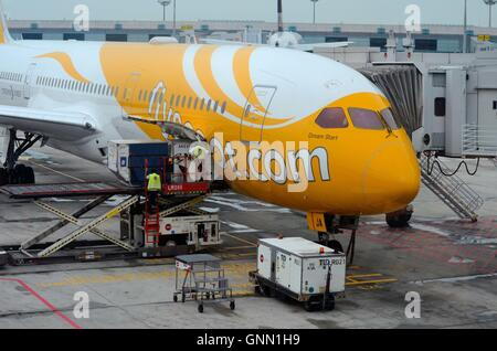Stationary Scoot airline airplane serviced with container baggage loading on Changi airport tarmac Singapore - Stock Photo