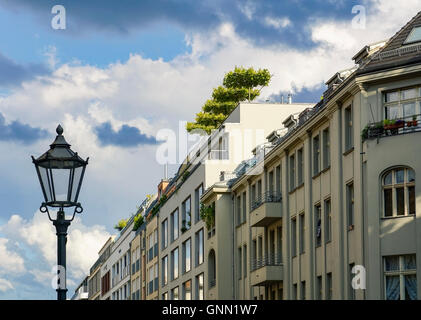 High-class real estate with rooftop trees in Berlin Mitte, Germany