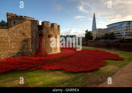 The moat of the tower of London is covered in a sea of poppies commemorating the centenary of the outbreak of World - Stock Photo