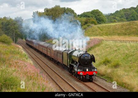 Flying Scotsman steam train. In a cutting at Morralee, Bardon Mill, Newcastle & Carlisle Railway (N&CR), Northumberland, - Stock Photo